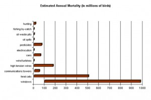 A chart showing estimated numbers of birds killed annually by each of several different causes. Data from various sources.
