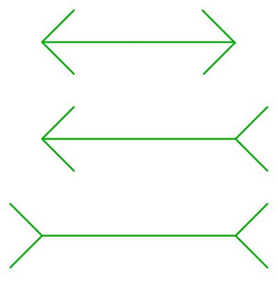 illusions optical brain teasers illusion puzzles lines line length same longer arrow which arrows fast three slow thinking classic 2007