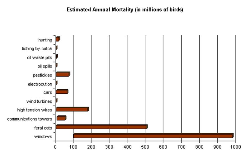 Causes Of Bird Mortality Sibley Guides