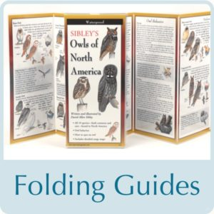folding guides