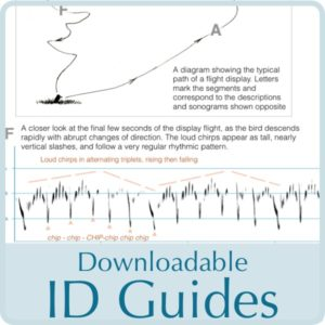 ID guides