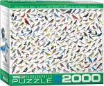 Sibley birds puzzle - 2000 pcs