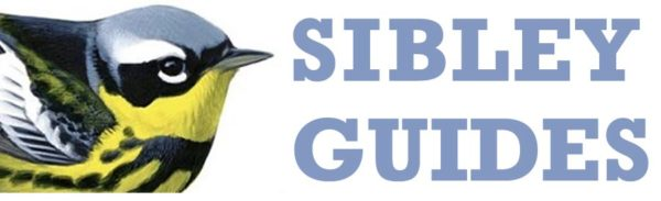 Sibley Guides