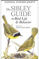sib_birdlife_tn